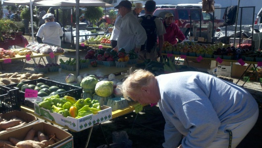 Tom Yager checking out the veggies at Englewood Florida's Farmer Market